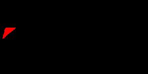 Logo partner Bridgestone 2